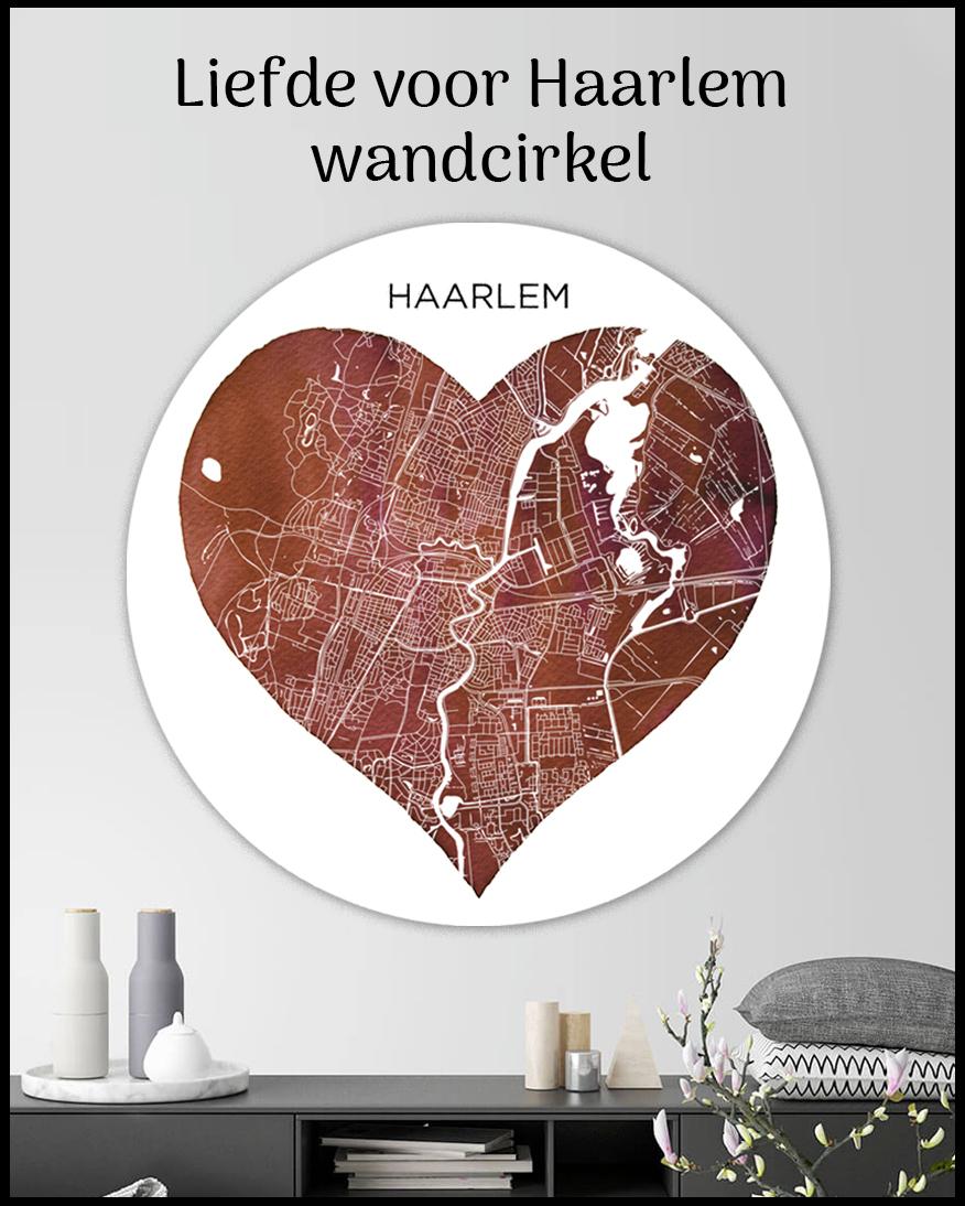 Wandcirkel Haarlem